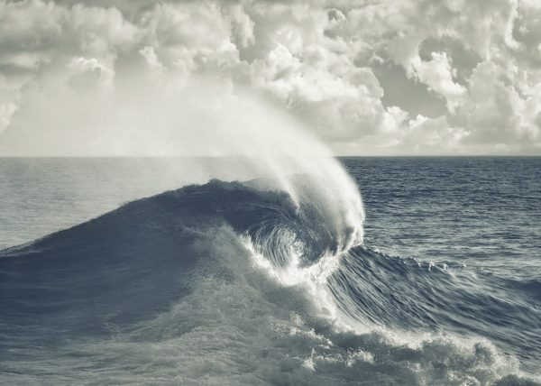 The Rogue Wave