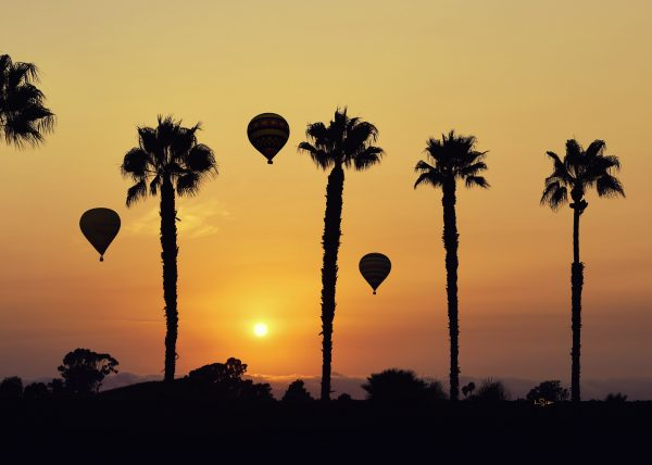 Hot air Balloons Silhouette the Sunset sky